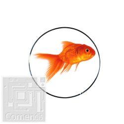 RED FISH Orange Lefolyó dekor