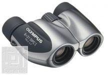 8x21 DPC I  Silver incl. Case